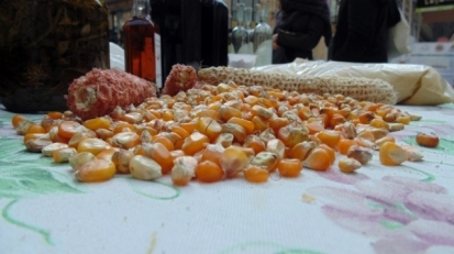 leguminosa slow food Napoli